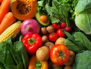 2/3(土)募集!栄養素が足りている? 不調の原因はそこにある! 必須栄養学セミナー